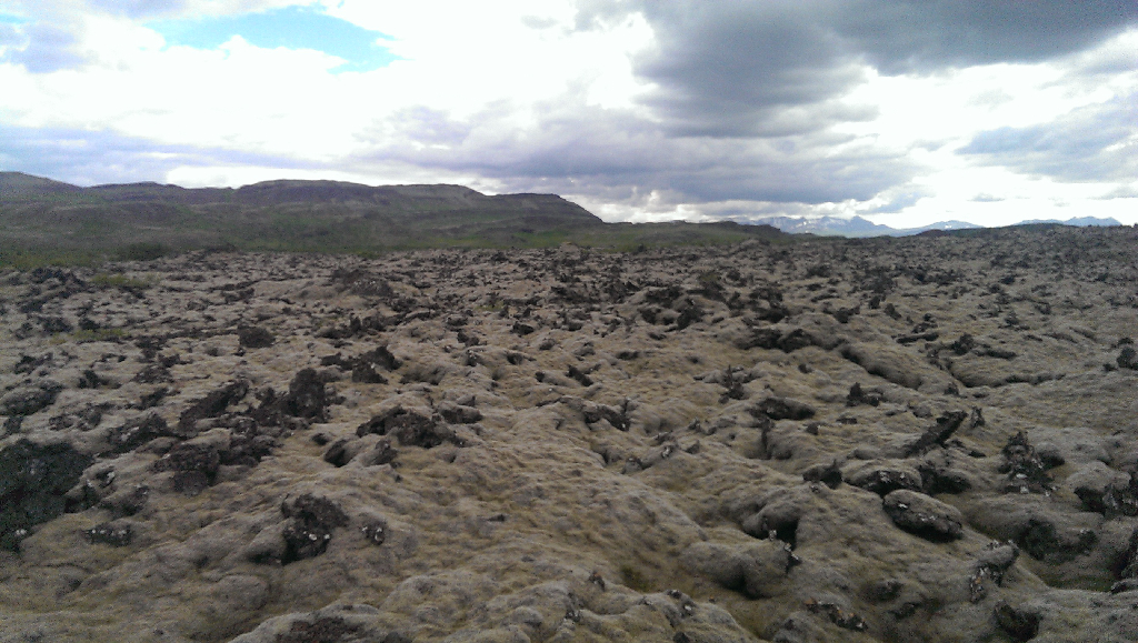 A field of lava that has cooled down and over time became covered in green moss. It was as a see of waves frozen in time.